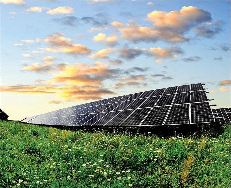Chọn Điện Mặt Trời Hay Điện Lưới Cho Farmstay