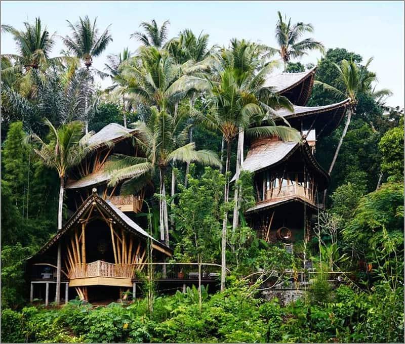 Hệ Sinh Thái Eco Village