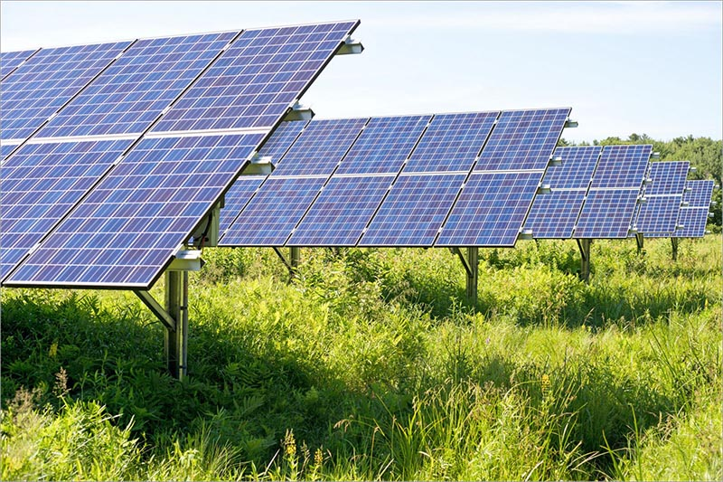 Thiết Kế Farmstay Dùng Điện Mặt Trời