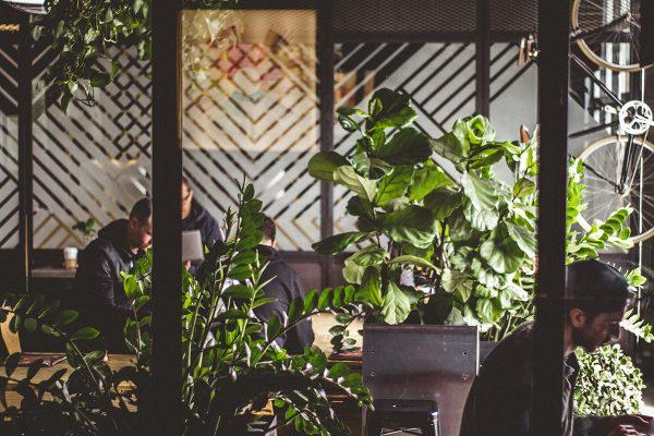 Thiết Kế Quán Cafe Dezicor