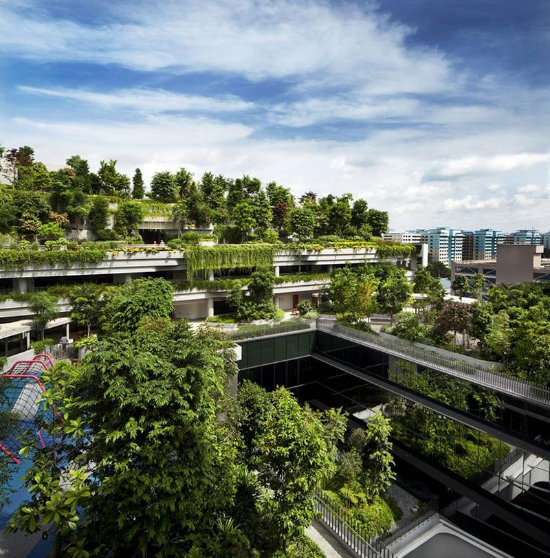 Kiến Trúc Xanh Ở Singapo