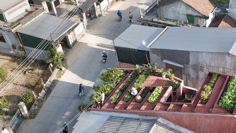Ngôi Nhà Vườn Rau Trên Mái