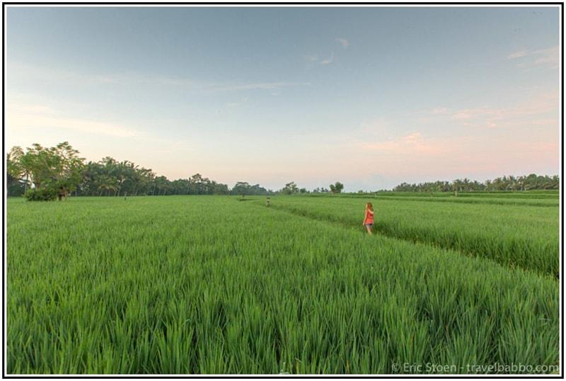 Quy Hoạch Farmstay Đồng Bằng