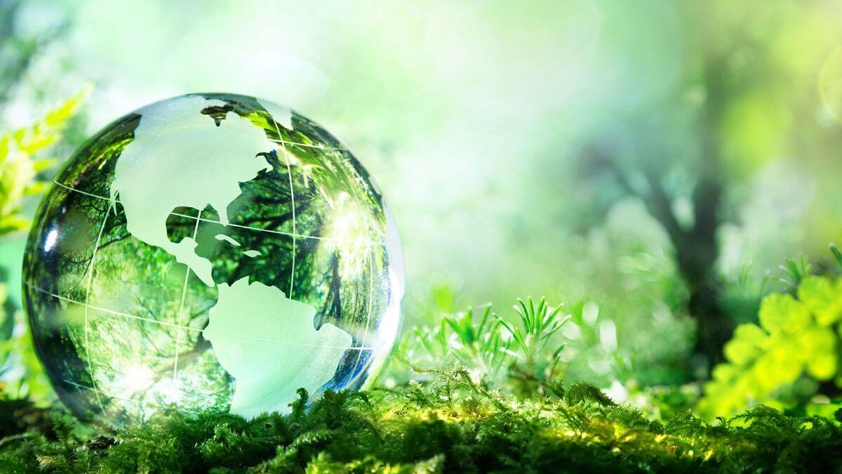 Công Trình Xanh Cho Một Trái Đất Xanh