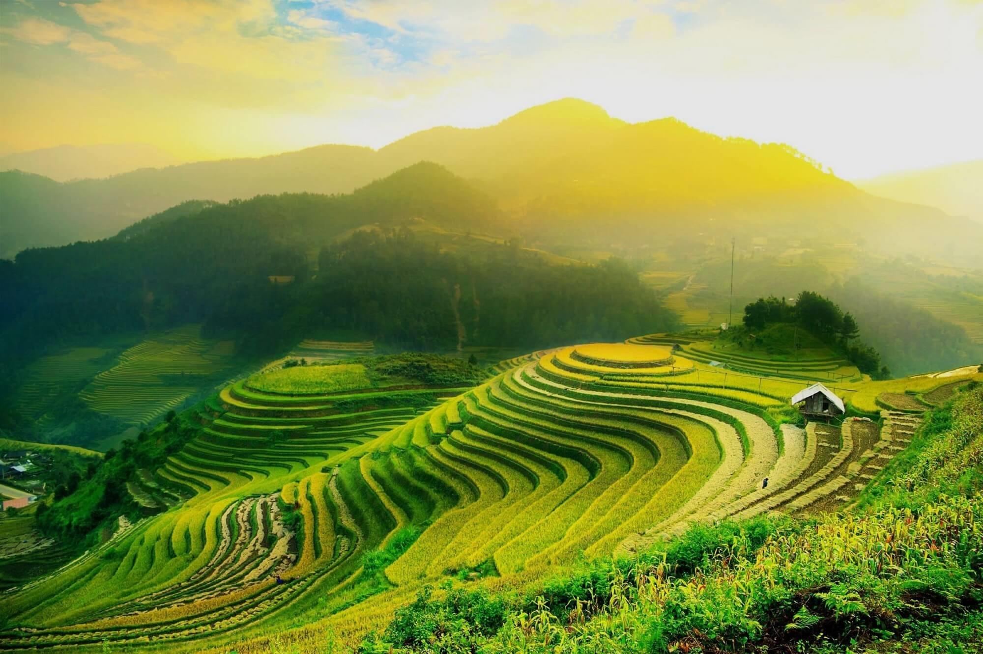 Thiết Kế Farmstay Thuận Tự Nhiên